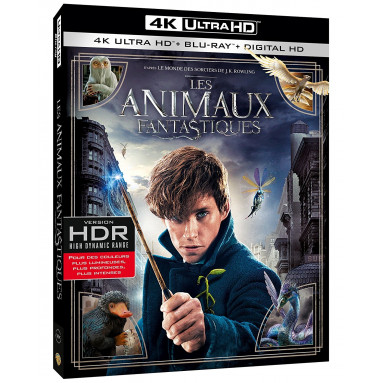 ANIMAUX FANTASTIQUES (ULTRA HD BLU RAY)