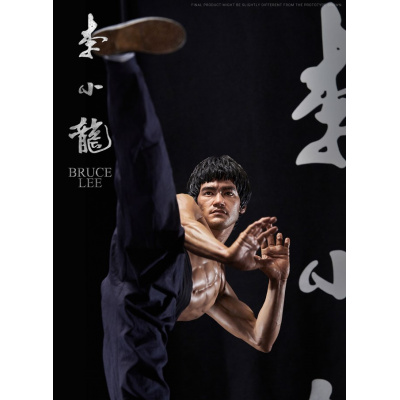 COLLECTIBLE BRUCE LEE TRIBUTE
